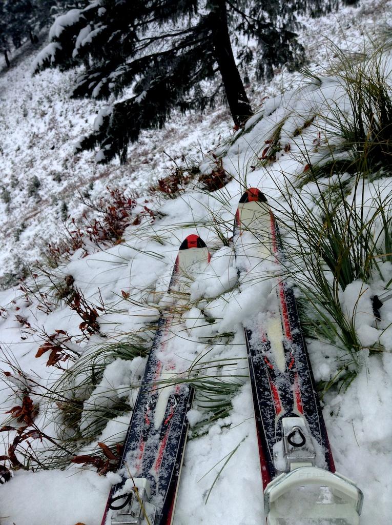 Minimal snow coverage
