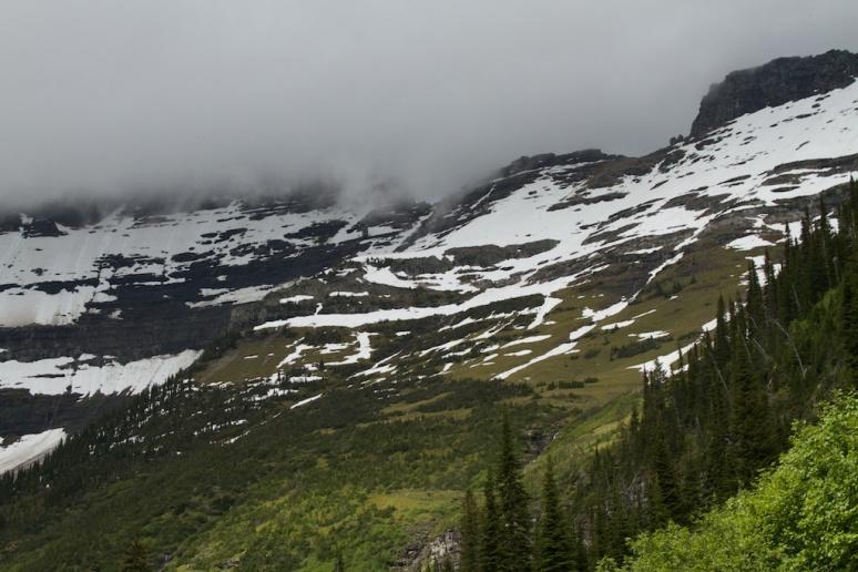 Snow Receding Near Logan Pass