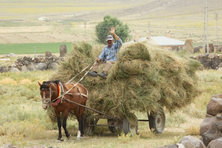 A Friendly Villager Transporting Hay